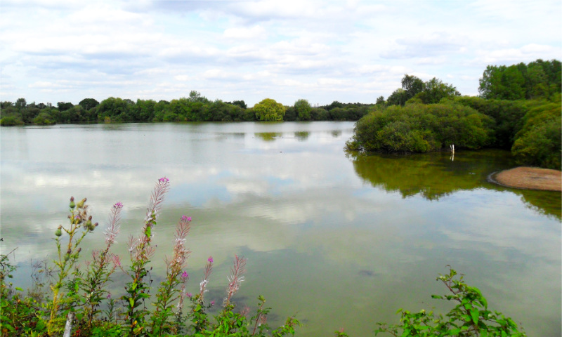 Whisby Nature Reserve Car Park